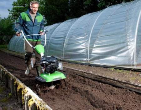 Як вибрати садовий